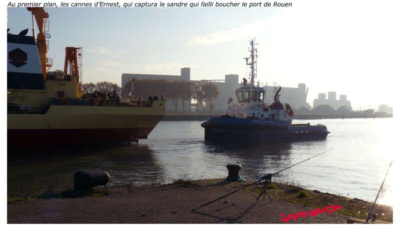 PORT DE ROUEN_2011-11-10_00035