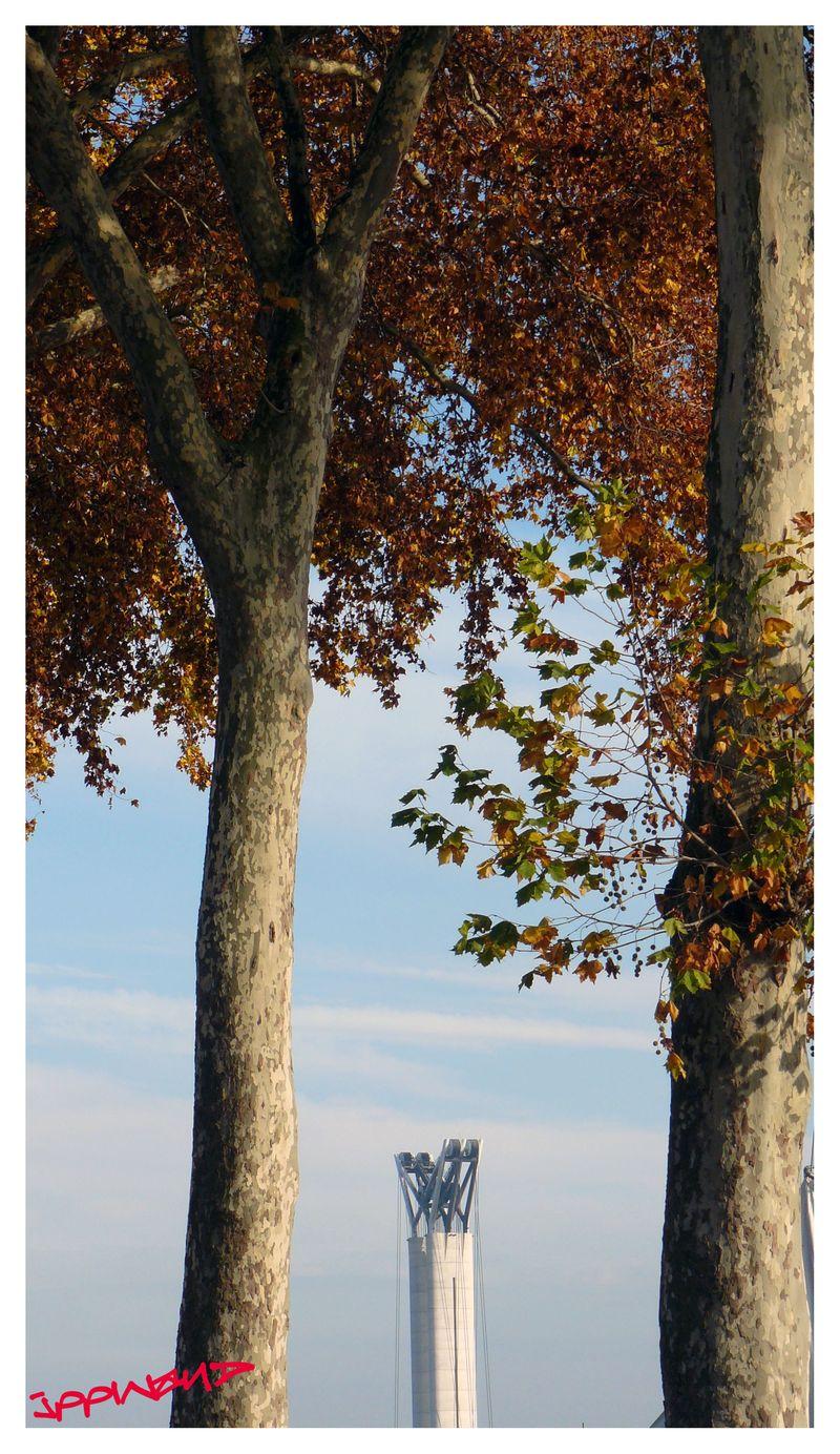 PORT DE ROUEN_2011-11-10_00024